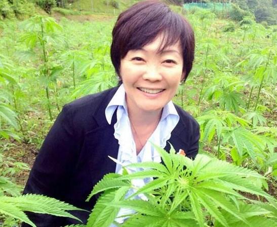 安倍昭恵大麻畑での画像