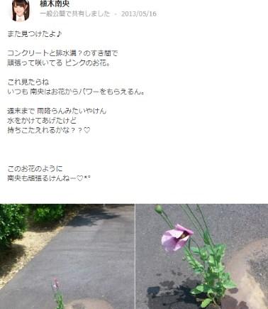 植木南央が違法な花をアップし警察から連絡