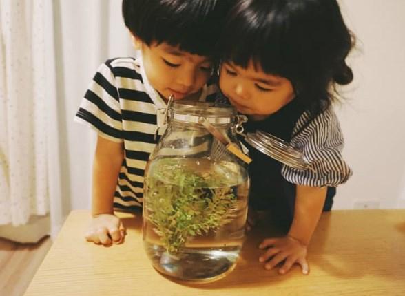 ハマケンは子供に愛情たっぷり
